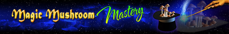 Magic Mushroom Mastery